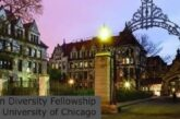 Mellon Diversity Fellowship at the University of Chicago: (Deadline 29 March 2021)