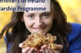 2021 Ireland Government Scholarship – Fully Funded: (Deadline	26 March 2021)
