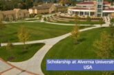 Scholarship at Alvernia University in the USA: (Deadline 1 May 2021)