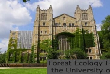 Forest Ecology Fellowship at the University of Michigan: (Deadline 17 July 2021)