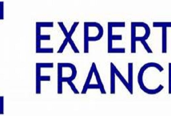 Short-Term National Professional Integration and Career guidance Expert to Support the Development of Professional Integration and career Guidance support Mechanisms in Rulindo District at Expertise France: (Deadline 3 August 2021)