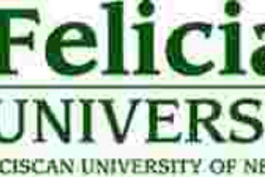 Felician College 2021 Undergraduate Scholarships for International Students (USA): (Deadline 31 July 2021)