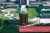Fully Funded Scholarships at University of Tokyo in Japan: (Deadline 30 September 2021)